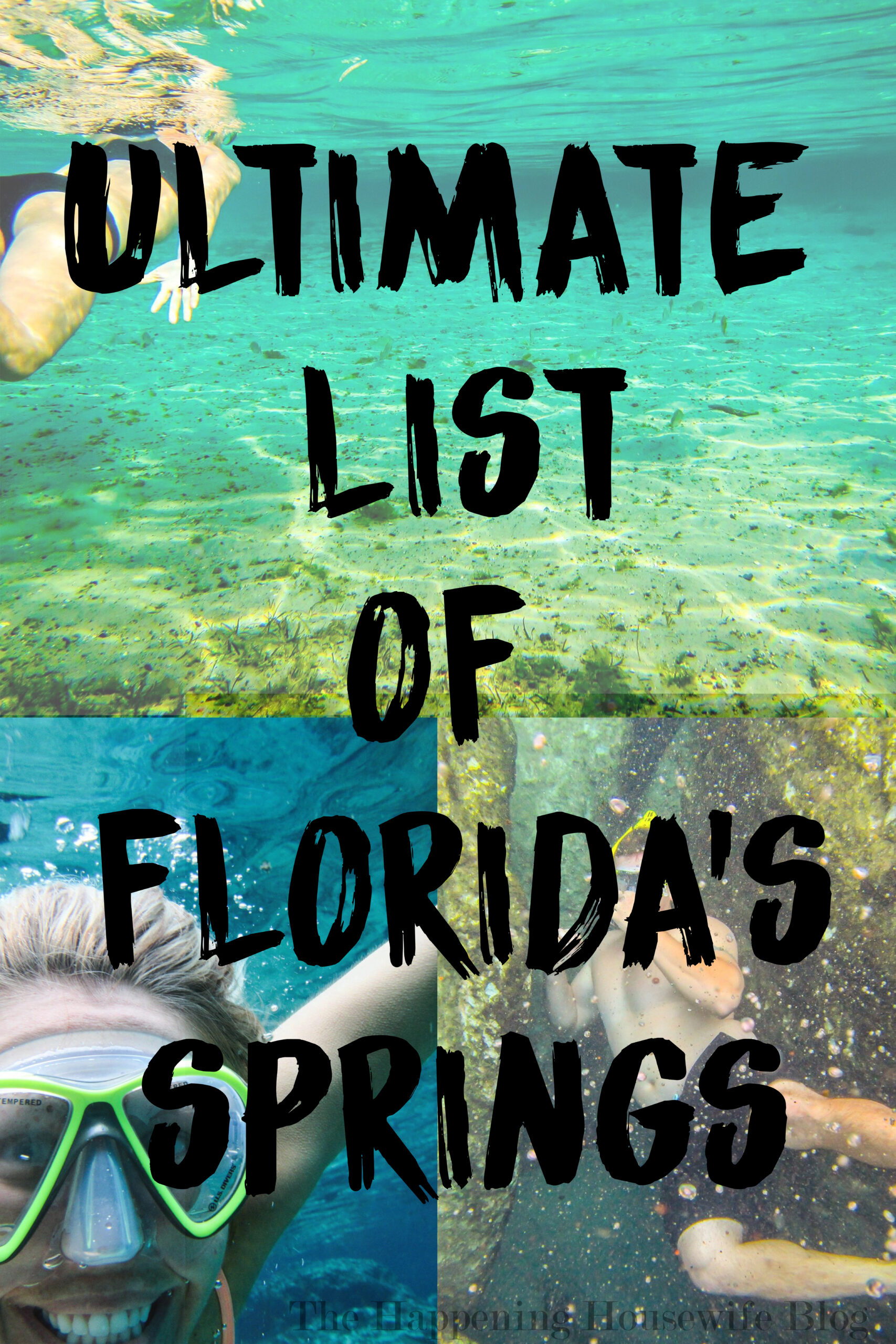 Ultimate List of Florida Springs.jpg