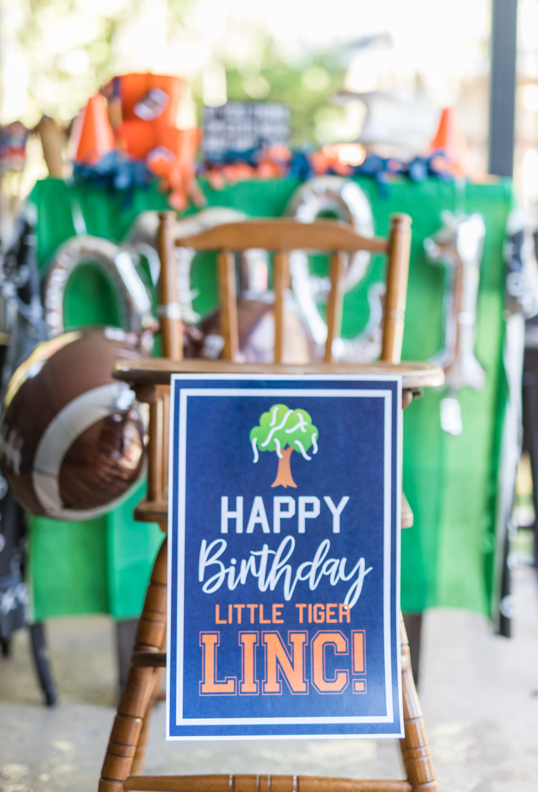 Lincolns One Birthday (42 of 48)