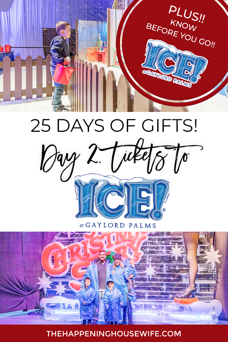 Gift Guide Tickets to Gaylor Palms ICE Everything you should know before going to ICE at Gaylord Palms!!! ICE! 2018 A Christmas Story Where to see Snow in Florida #gaylordpalmsice #icegaylord #gaylordpalms