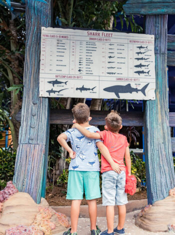 How to Homeschool at SeaWorld!! FREE Day Guide to Learning at SeaWorld!